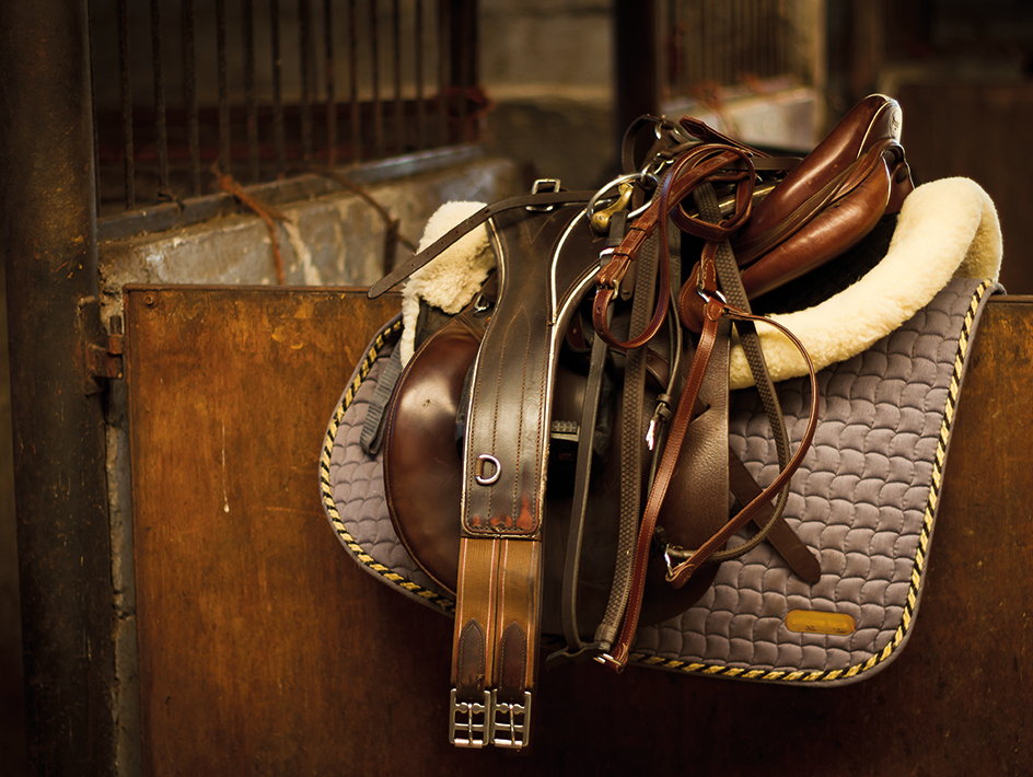 horse saddles and equipment